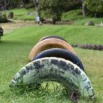 Retired Tire Swings